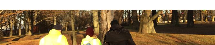 Trädinventering